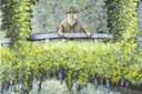 ¿Dónde está la ranita? Claude Monet en Giverny