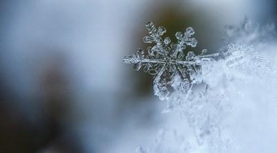 Kepler i els floquets de neu