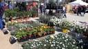 La Fira de l'Arbre es transforma enguany en la Setmana de la Natura a Mataró