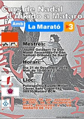 Curs de Nadal d'Aikido a Mataró