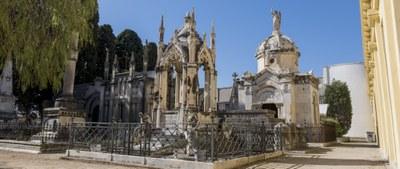 Cementerios y servicios funerarios